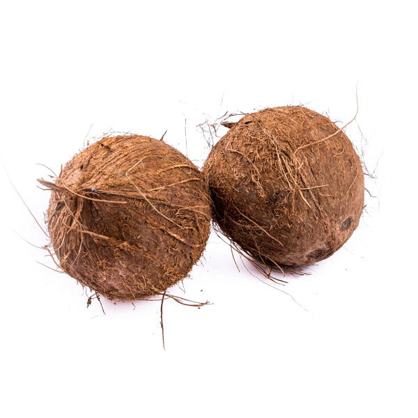 Coconts Pack